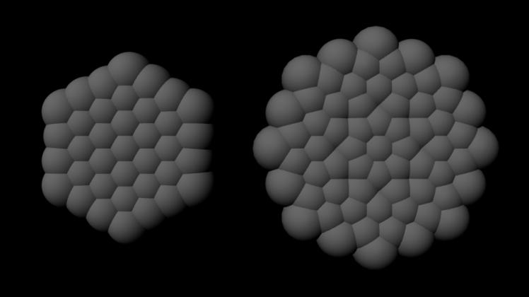 Sphere Flowers Metatronic vs Krystal
