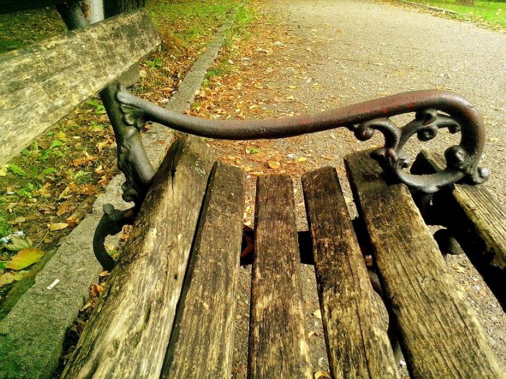 wooden-bench-for-relaxing-in-the-park-725x544