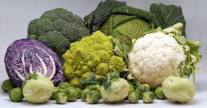 cruciferous-vegetables1416328860.jpg